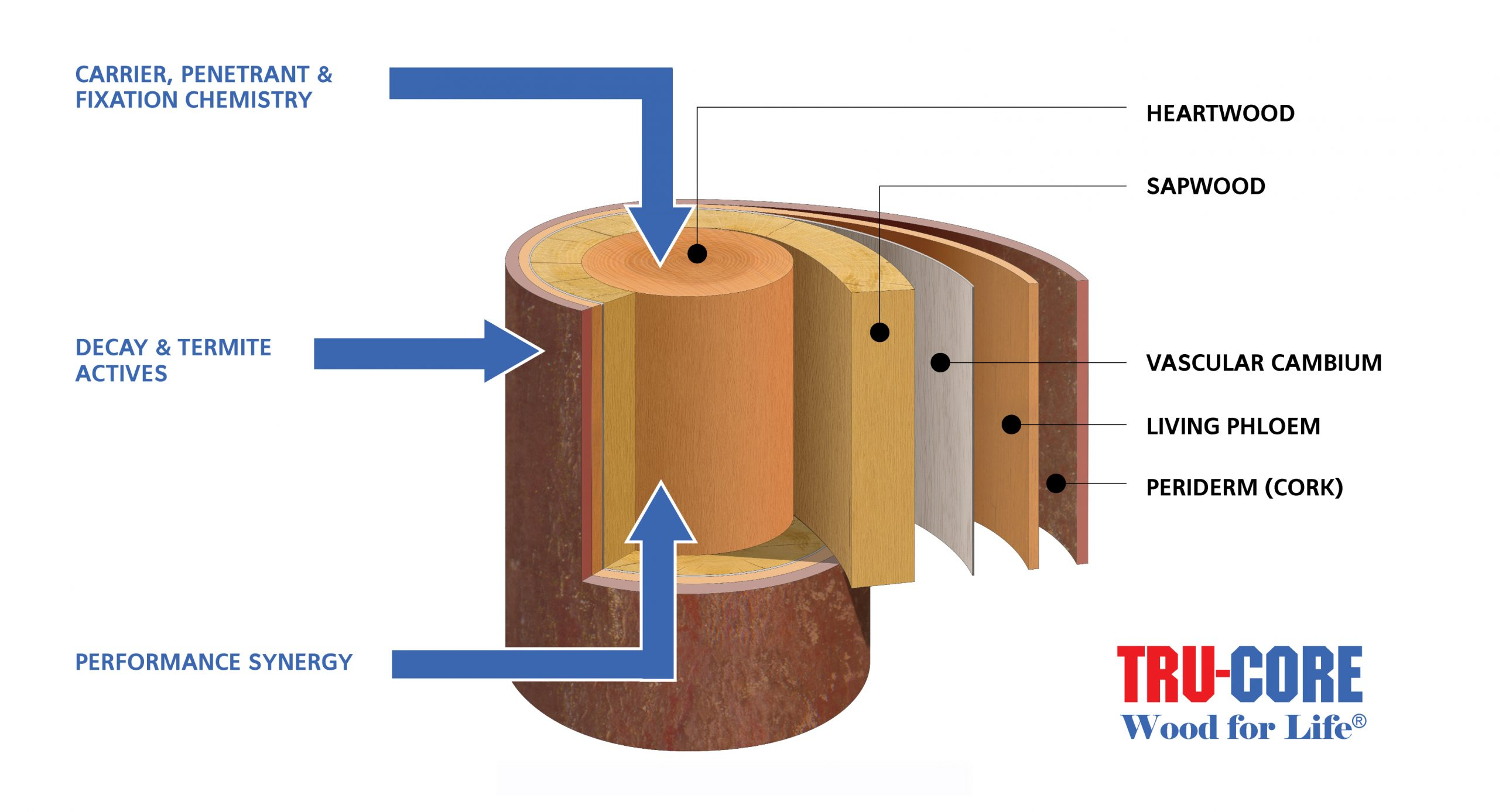 Tru-core-timber treatment Fishers Timber